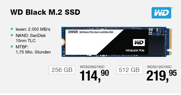 Artikel: WDS256G1X0C; EUR 84.95
