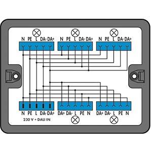 WINSTA® MIDI, distributor box, alternating current + DALI WAGO 899-631/313-000