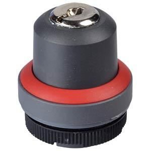 FS+ 22 - Schlüsselschalter - 1x +90° RAFI 1.30.255.201/0300