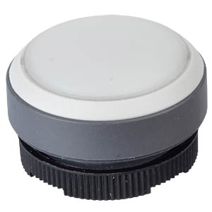 FS+ 22 — push-button — round + protective cap, silver/white, can RAFI 1.30.270.005/2208