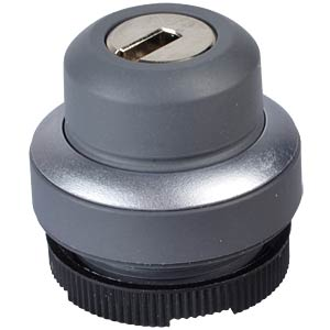 FS+ 22 — key-operated switch — round, metal, locking 1x90°, tent RAFI 1.30.275.502/0000