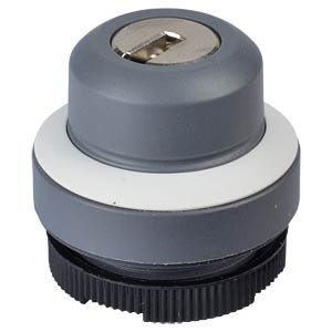 FS+ 22 — key-operated switch — round, silver-grey, 1x90°, L-type RAFI 1.30.275.221/0800