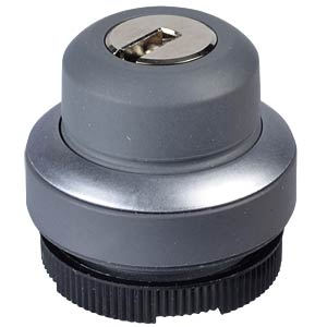 FS+ 22 — key-operated switch — round, metal, 2x40° RAFI 1.30.275.102/0000