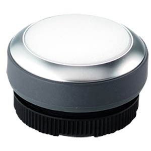 FS+ 22 — push-button switch — metal, white, can be illuminated RAFI 1.30.270.031/2200