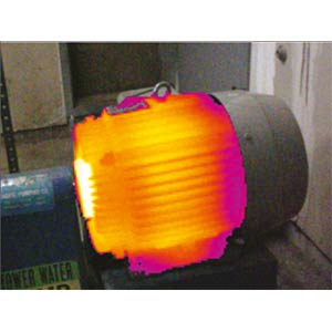 Thermal imaging camera for industrial applications FLUKE 3810311