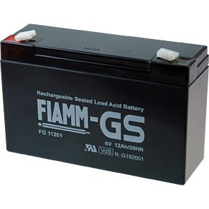Blei-Vlies-Akku, 6 V, 1,2 Ah, VDS FIAMM FG11201