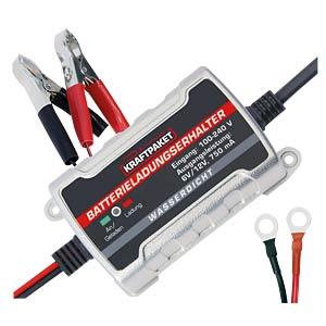 Automatic charger, 750mA, 6/12V DINO LED 136303