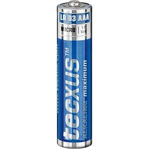 Tecxus Maximum Alkaline 10XAA TECXUS 23778