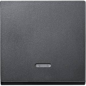 Rocker with control window — System M, anthracite MERTEN 431014