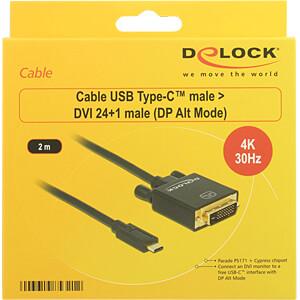 USB Kabel, C Stecker auf DVI 24+1 Stecker, DP-Alt Mode, 2 m DELOCK 85321