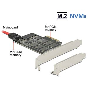 PCIe x4 > 1x M.2 Key B + 1x NVMe M.2 Key M DELOCK 89558
