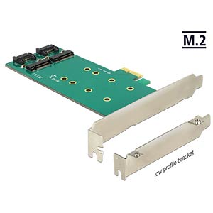 PCI Express Card > 2 x M.2 to SATA DELOCK 89473