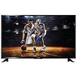 Fernseher, 80cm/31,5, HD, DVB-T2/C/S2, EEK A DYON