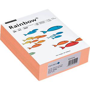 PAPY 88042497-A5 - farbiges Papier