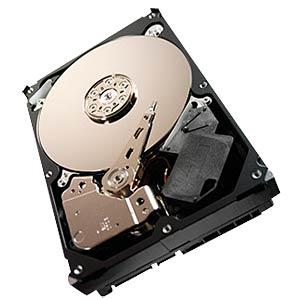 Desktop hard drive, 2TB, Seagate Surveillance SEAGATE ST2000VX000