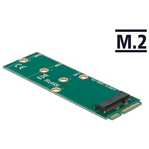 DELOCK 64109 - Konverter mSATA > M.2 Key B