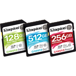 SDXC-Speicherkarte 256 GB, Canvas React KINGSTON SDR/256GB