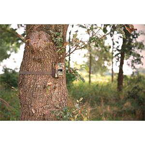 Überwachungskamera, zur Wildbeobachtung KÖNIG SAS-DVRODR05