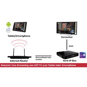 Smart TV/IP-Box, Android, DVB-S2, PVR ready XORO XOR400385