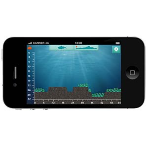 reelsonar scale instructions