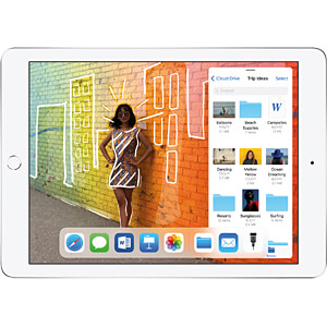 iPad (2018) Wi-Fi + Cellular 128 GB, Silber APPLE MR7D2FD/A