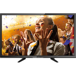Fernseher, 80cm/31,5, HD, DVB-T2/C/S2, EEK A+ DYON D800143