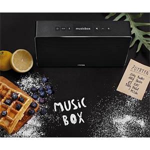 Canton Musicbox S (titan) Bluetooth CANTON 03683