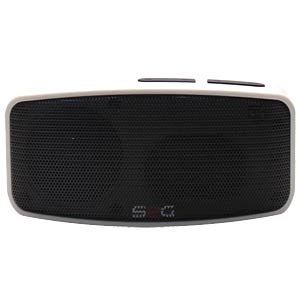 Bluetooth speaker with FM RADIO SOUND2GO 10097