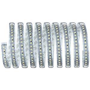 LED-Streifen MaxLED, 39 W, 3300 lm, kaltweiß, 3000 mm, dimmbar PAULMANN 70669