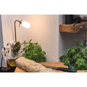 Touch plug lamp, Assistent Flexus IV, 20 W, G9, brushed Iron PAULMANN 99697