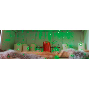 Luxula Green Mini Laser-Lichteffekt, 2,5 W LUXULA