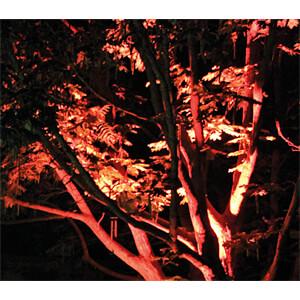 LED-Gartenstrahler, 5 W, rot, IP65 LUXULA LX0661