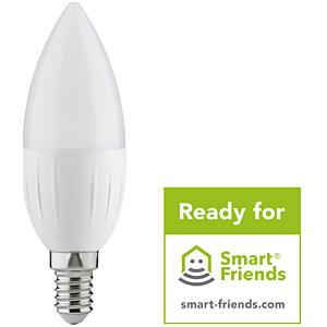 PLM 50055 - Smart Light