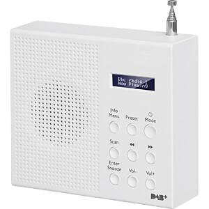 DAB+/FM Radio mit LCD Display FONTASTIC 253416