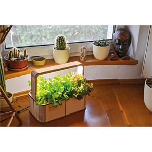 GREENBOX - Smarter Indoor Garden