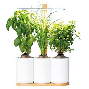 PRET LILO4-BMC - Indoor Garden