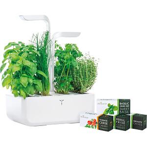 VER CAWAW-DENL - Indoor Garden