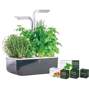 VER SSBAS-DENL - Indoor Garden