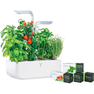 VER SAWAS-DENL - Indoor Garden