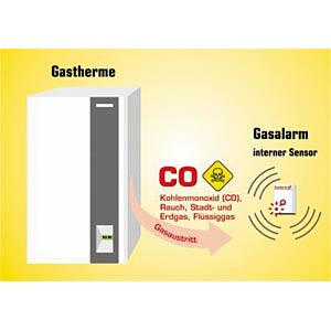Gas detector for CO and smoke (with integrated sensor) SCHABUS 300223