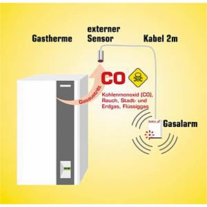 Gas detector for CO and smoke (with ext. sensor) SCHABUS 300225