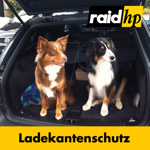 https://cdn-reichelt.de/bilder/web/xxl_ws/R600/RAID_360200_02.png